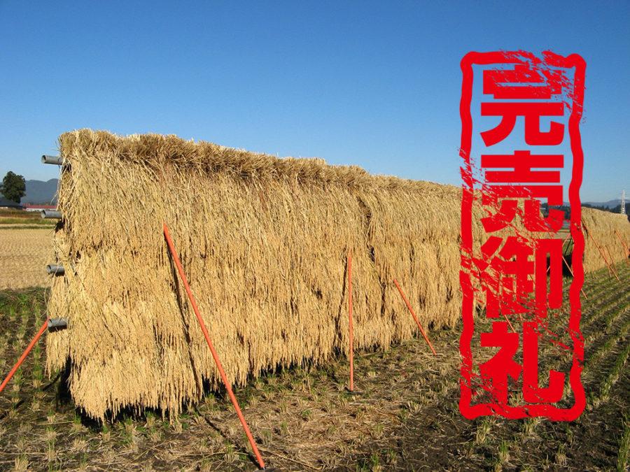 あきたこまち天日乾燥米 完売のお知らせ