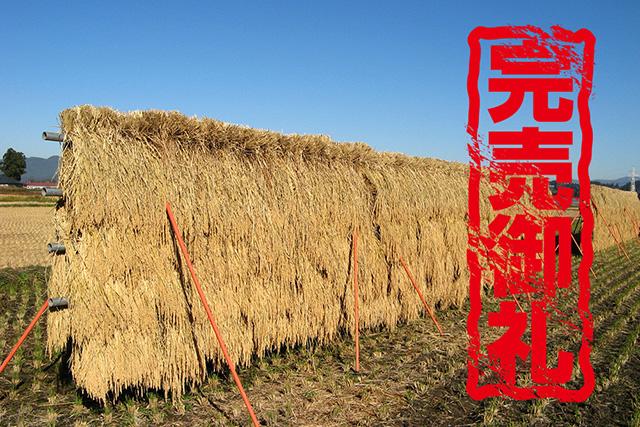 天日乾燥米 (令和2年産) 完売のお知らせ